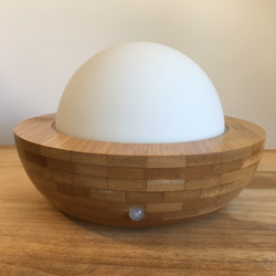 Bamboo Diffuser Glass Dome
